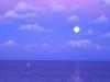 oceans-7.jpg