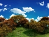 105 Best Nature HD Wallpapers