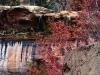 sfondo cascata
