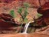 coyote-gulch-escalante-river-canyons-utah.jpg