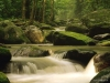 roaring-fork-river-great-smoky-mountains-national-park-tennessee.jpg