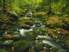 roaring-fork-timed-exposure-great-smoky-mountains-tennessee.jpg