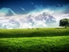 1680x1050_widescreen_wallpaper_kol_9.jpg