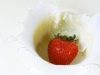 ws_berry_milk_drop_1680x1050.jpg