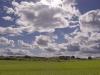 ws_grass_hd_1680x1050.jpg