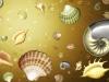 ws_shells_1680x1050.jpg