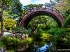 Japanese Garden - San Francisco