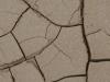 textures-03.jpg