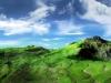 1680x1050_widescreen_wallpaper_5_3_.jpg
