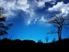 1680x1050_widescreen_wallpaper_6_3_.jpg