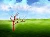 1680x1050_widescreen_wallpaper_strange_world_v_left.jpg