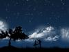 ws_dancing_in_moonlight_1680x1050.jpg