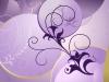 ws_purple_spring_1680x1050.jpg